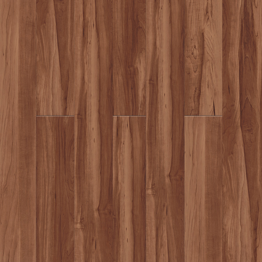0780 Sugar Maple