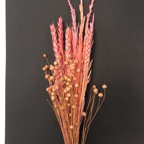 Super Pink dried flowers