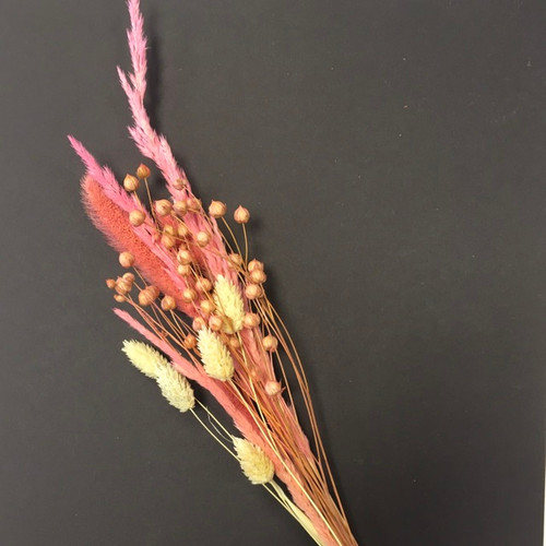 Pink and Cream Dried flowers