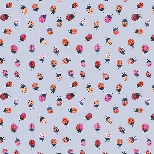 Ladybird Mini