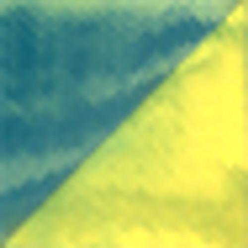 Genesis Paint