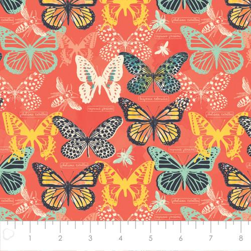 Butterflies Orange