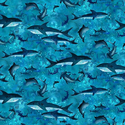 Sharks 4504-17