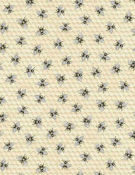 Cream Bees! CD7173