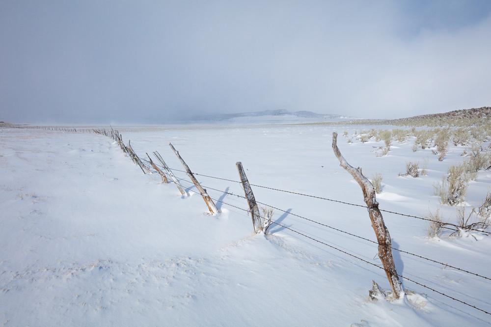 Winter Fence - Eastern Sierra