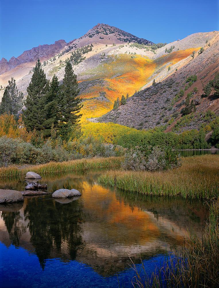 North Lake Colors