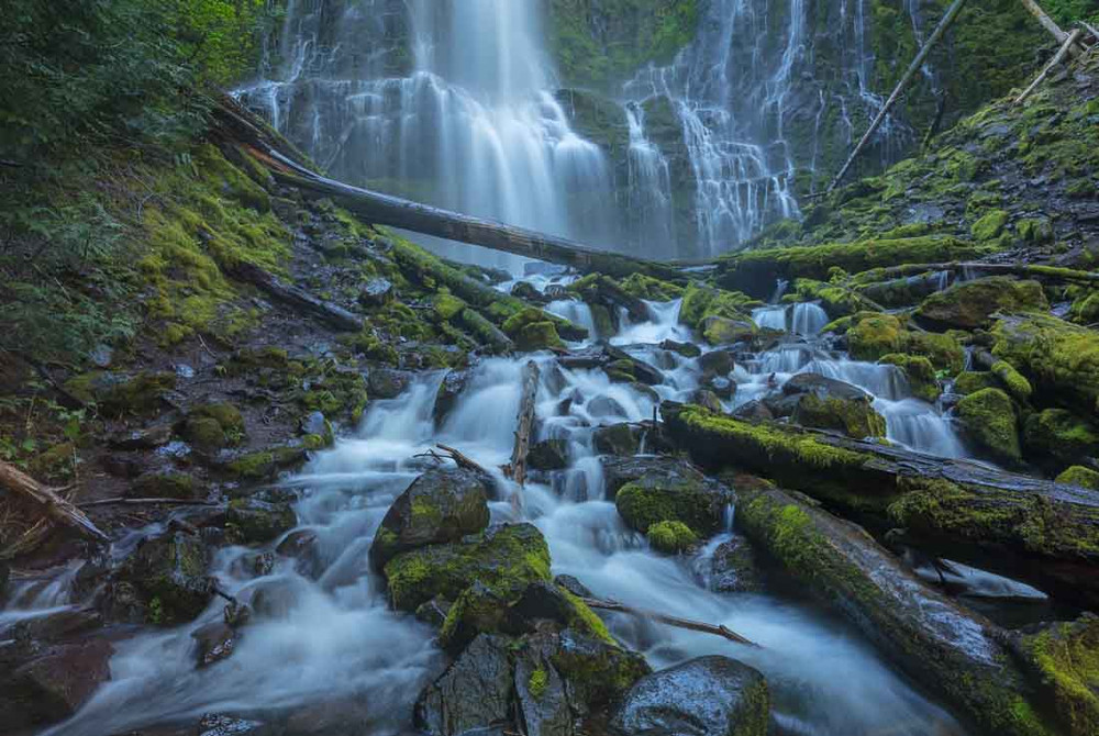 Lower Proxy Falls - Central Cascades