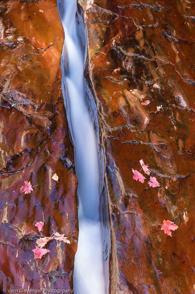 Dreamy Creek in Zion NP