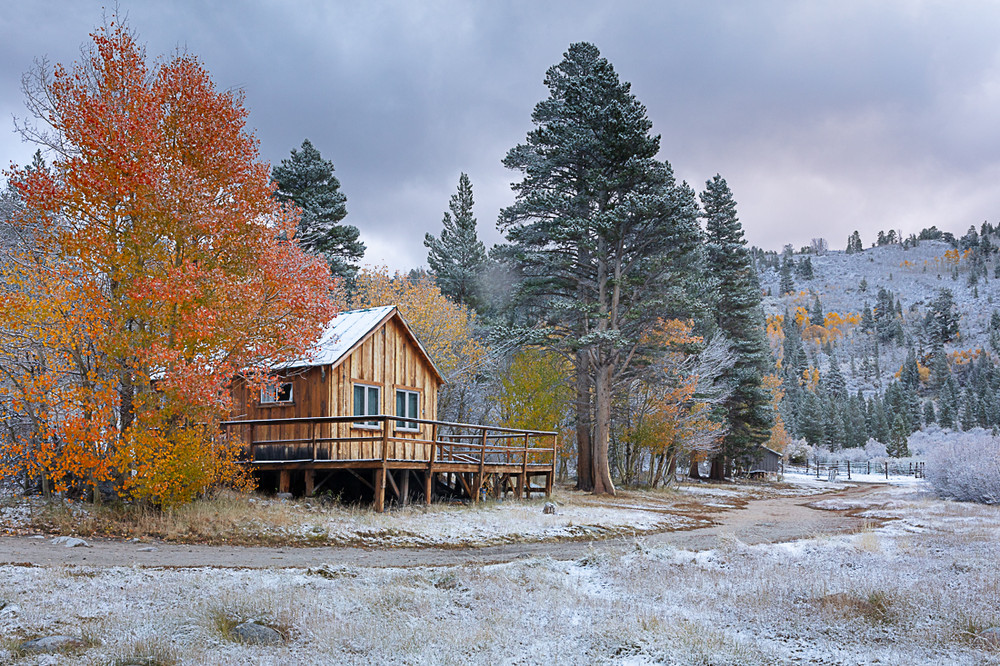Old Ranch House, Autumn in the Sierra