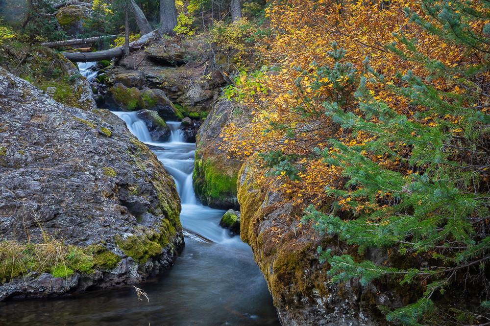East Fork of Dallas Creek