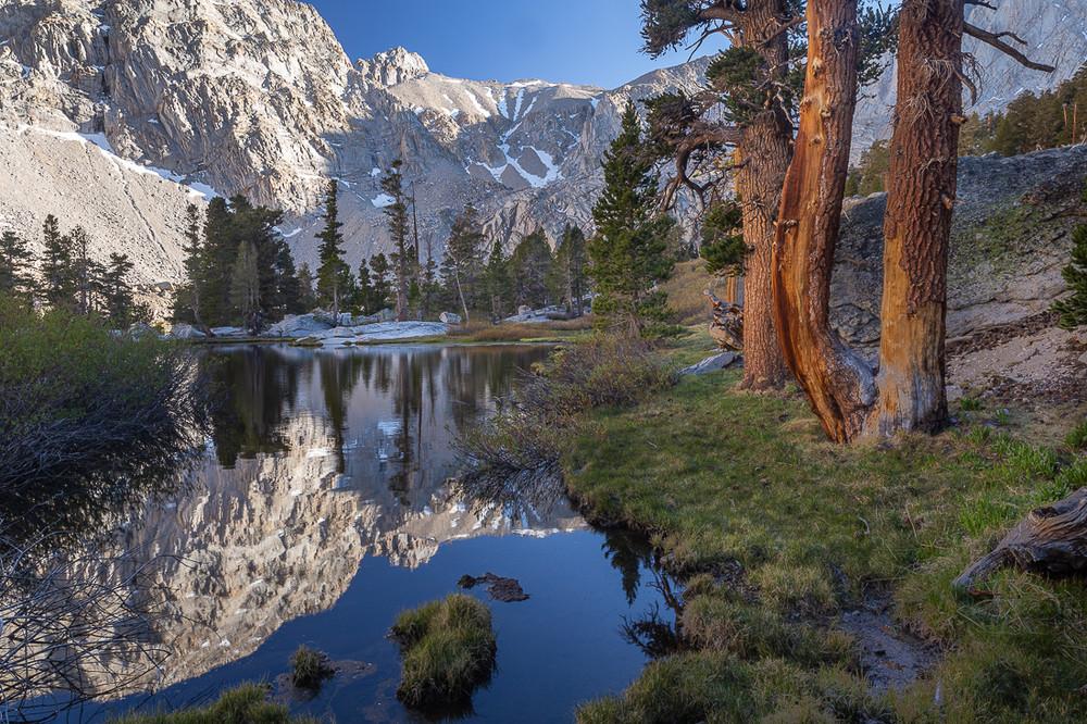 Trailside View - John Muir Wilderness