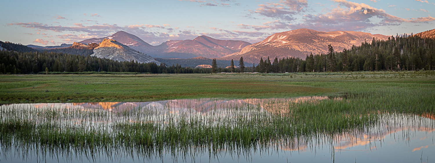 A Moment in Tuolumne Meadows