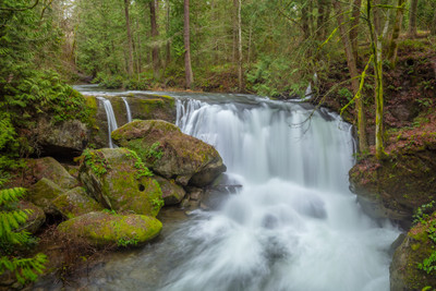 Whatcom Creek and Falls