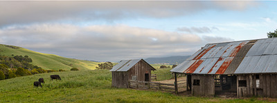 Spring in Point Reyes, Panoramic