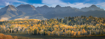 Panoramic - Aspens and Mount Sneffells