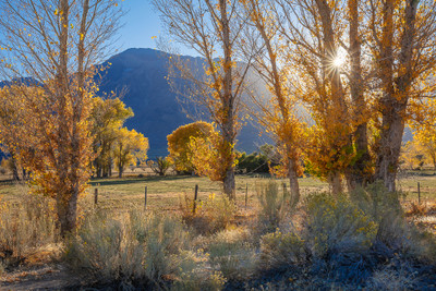 Round Valley and Autumn Aspen