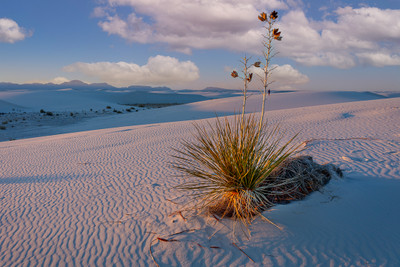 White Sands - The Magic Hour