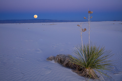 "The Rising ""Worm Moon"" at White Sands National Monument"