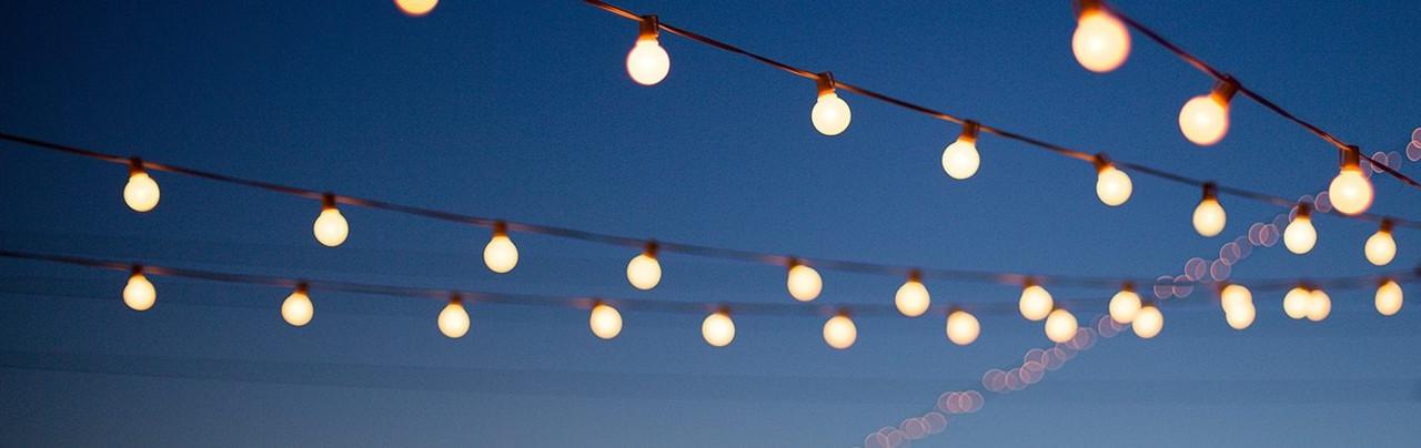 Garden Festoon Cool White Lights