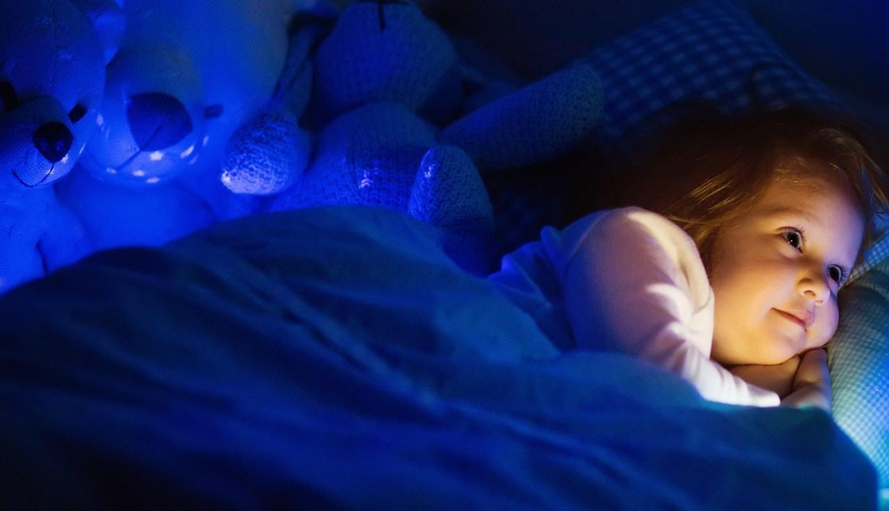 LED Bathroom Night Lights