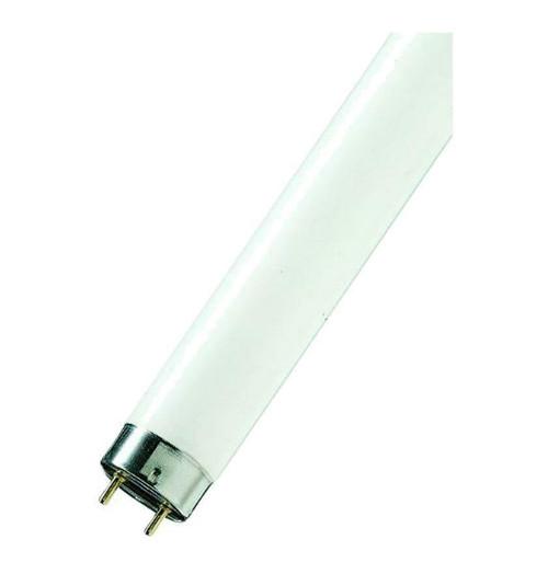 """Sylvania Fluorescent 29"""" T8 Tube 16W F16W/840 Image 1"""