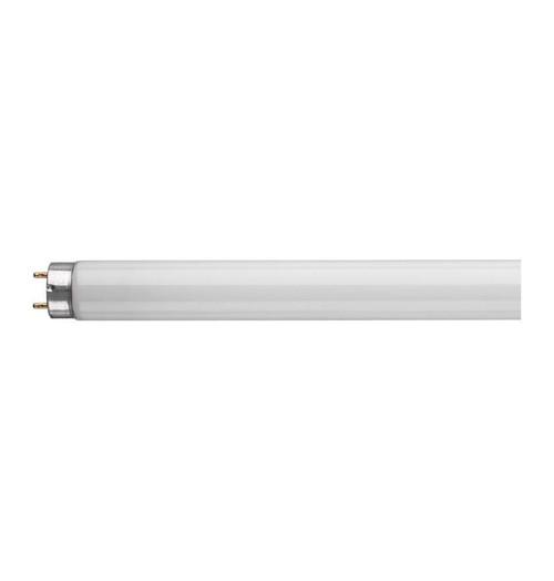 Crompton Fluorescent 2ft T8 18W 6500K FT218SPDYLT Image 1