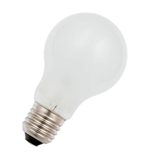 Schiefer Lighting 12V GLS E27 60W 276031901 Image 1