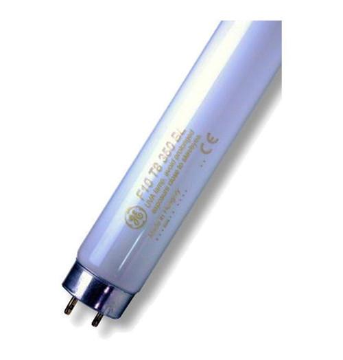 "Wemlite UV 13.5"" T8 10W UVA F10T8BL350 Image 1"