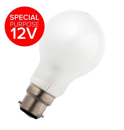 Schiefer Lighting 12V GLS B22 60W 226031901 Special purpose 12V