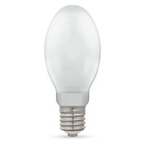 Elliptical Light Bulbs