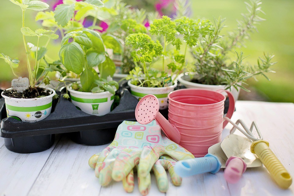 Look after garden tools
