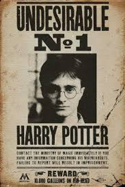 Harry Potter Undesirables No 1