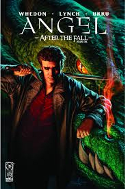 Angel: After the Fall Vol 1 TP