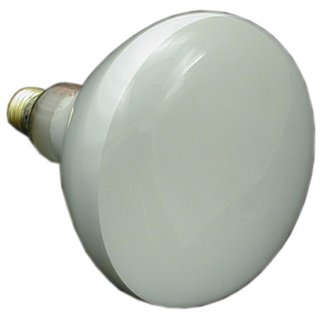 STA-RITE/ SWIMQUIP | BULB, 120V 500W FLOOD | 34600-0003