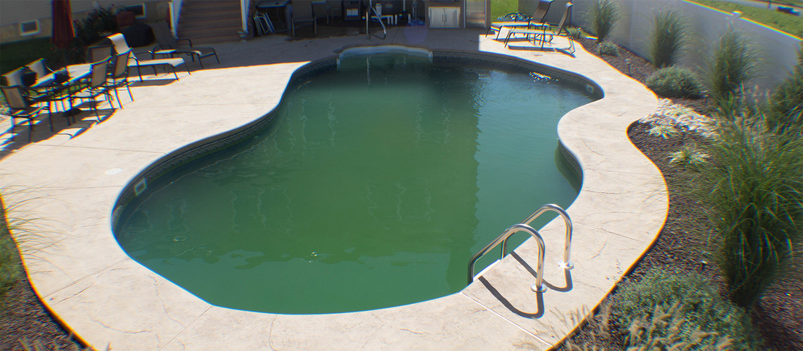 Help! There is Algae in My Pool! (And How to Get Rid of It)