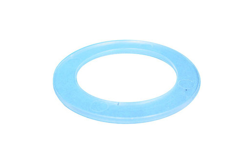 Pentair Pool Products | FILTER PART | RTL / RDC CARTRIDGE GASKET | R172222