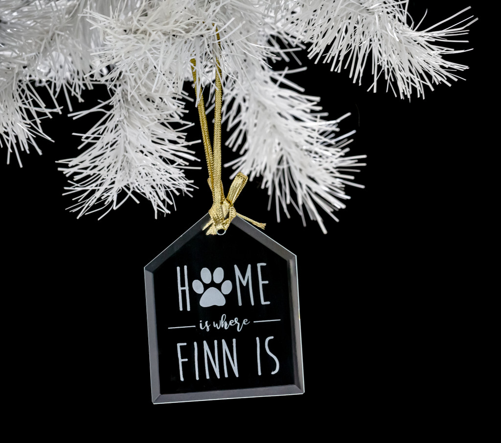 Personalized House Pet Ornament