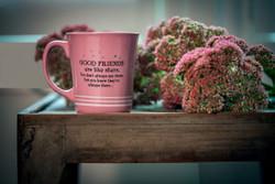 Good Friends Star Mug
