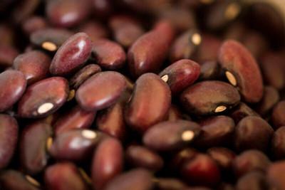 Domingo Rojo Beans Rancho Gordo