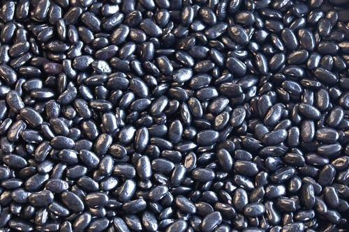 Chiapas Black Bean