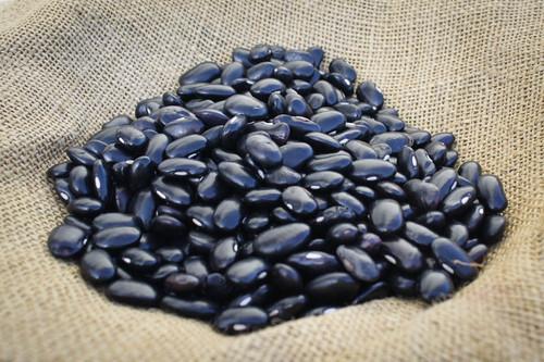 Ayocote Negro Rancho Gordo Bean