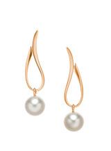 14KRG Akoya Cultured Pearl Open Tear Drop Earrings