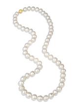 White South Sea Big Circle Pearl Necklace
