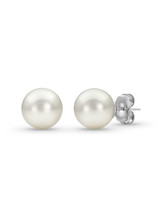 White South Sea Pearls Simple Studs