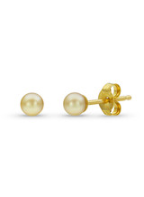 Rare Golden Baby Akoya Simple Studs