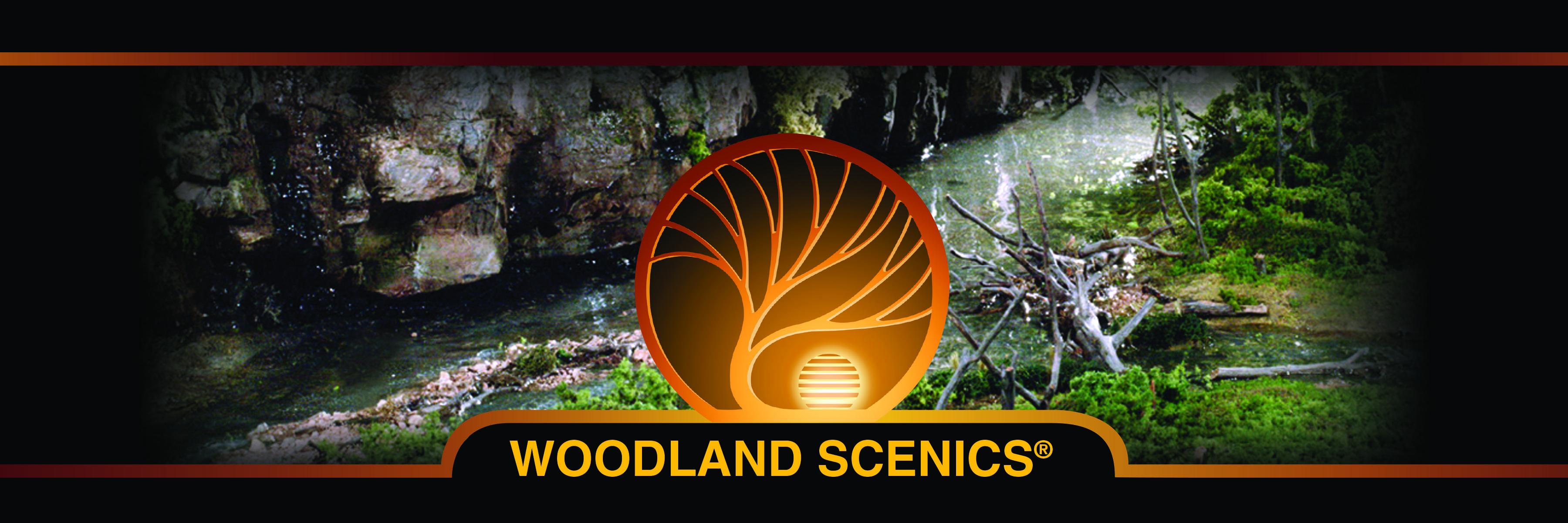 -b2b-resources-marketing-material-logos-woodland-scenics-company-logos-woodlandscenics-banner-12x4-1-.jpg