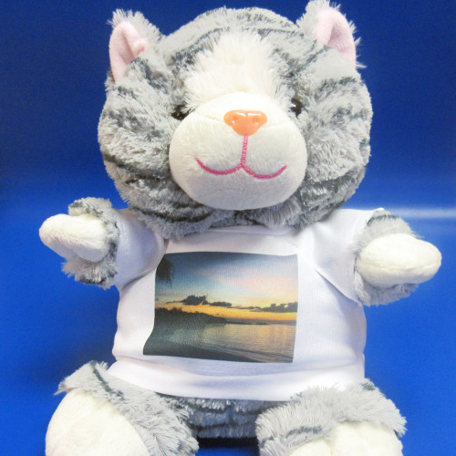 Personalised Coriander Cat Soft Toy From Something Personal