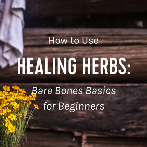 Healing Herbs - Bare Bones Basics for Beginners