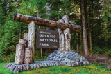 Insider's Guide to Olympic National Park