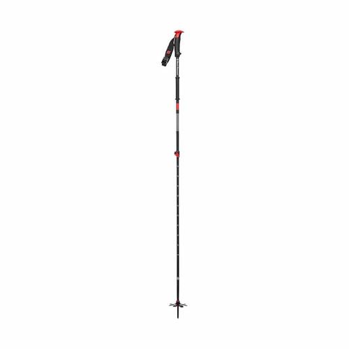 Traverse Ski Pole